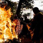 """1/17(金)は小郡市の""""かえる寺""""こと如意輪寺の「火渡り」へ"""