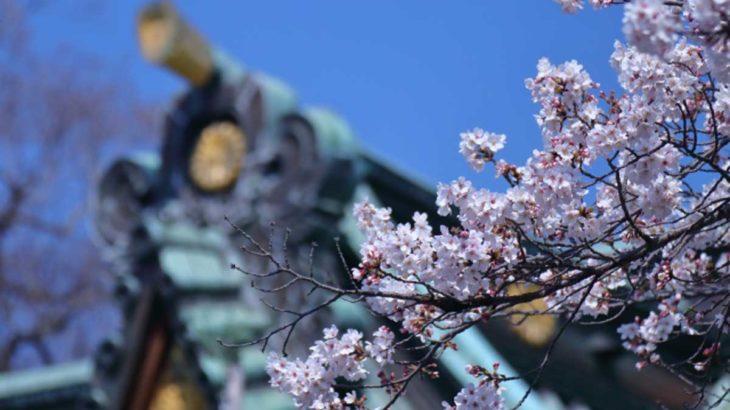 3/27(金)は朝倉市の「杷木市(はきいち)」へ行ってみよう!
