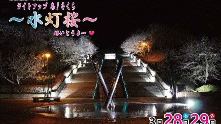 3/28(土)・29(日)は[あまぎ水の文化村]の桜のライトアップを観よう