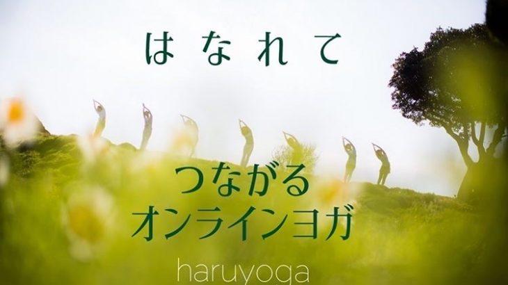 haruyoga(ハルヨガ)